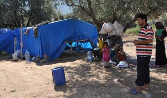 Çubuk Yıl Doğu Değil, Suriyeliyi Tercih Etti