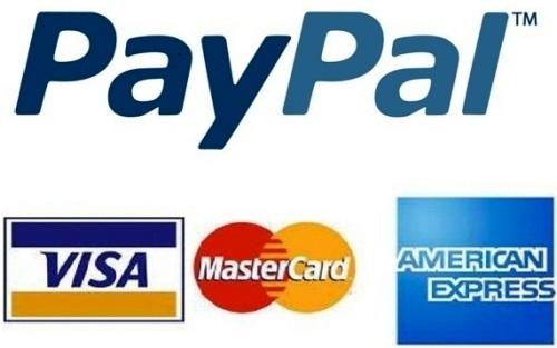Paypal'ın Lisans Başvurusunun Reddedildi